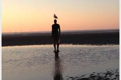 Friends-of-Crosby-Beach
